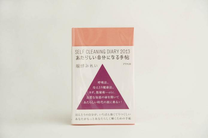 book_selfcleaning_diary